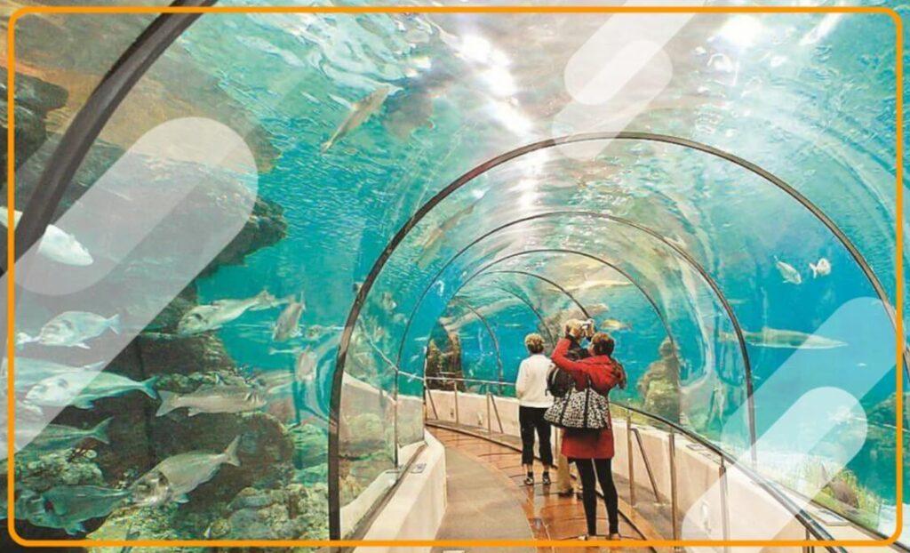 Marine Aquarium of Digha