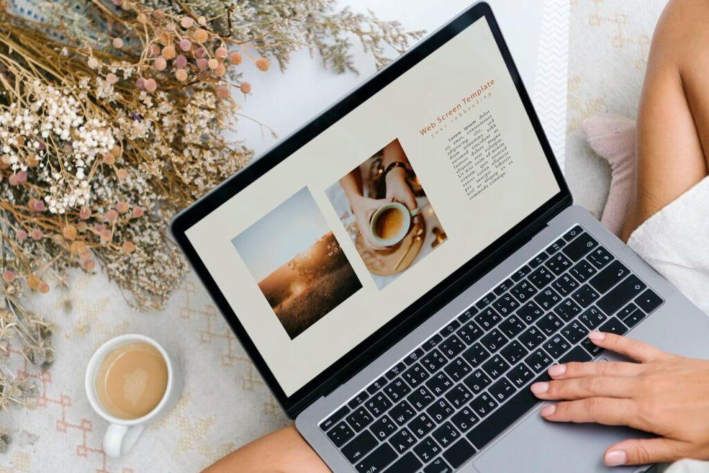 The Portfolio of the Website Designer